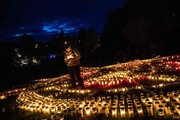 عکس روز| یادبود قربانیان کرونا
