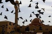 نماز عید فطر در مساجد عربستان و امارات ممنوع شد
