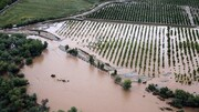 دارایی کشاورزان را آب برد و مسئولان را خواب | عدم ثبت ۱۴۰۰ پرونده در سامانه وزارت کشور