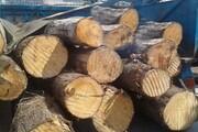 کشف ۶ تن چوب قاچاق در غرب تهران