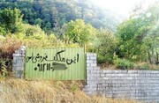 تیشه سودجویان به ریشه باغهای کویر ایران | تشدید برخورد با تغییرکابریهای غیرقانونی