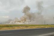 آتشزدن بقایای محصولات کشاورزی در البرز ممنوع است