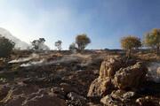 بیش از ۳۰۰ هکتار از مراتع و جنگلهای پاوه در آتش سوخت