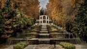 درختان تاریخی باغ شاهزاده ماهان شناسنامهدار میشوند