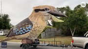 فیلم | پرنده غولپیکری که میخندد | هنرمند ایرانی ساکن استرالیا اثرش را در قرنطینه کامل کرد