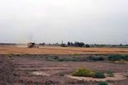 تدوین برنامه نجات دشت قزوین