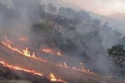 آتشسوزی در ۷ هکتار از باغها و مزارع روستای چراغان راسک