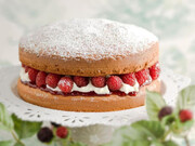 طرز تهیه کیک اسفنجی به روش آشپز ملکه انگلیس