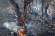 آتش در کمین مراتع و باغهای ارومیه