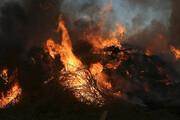 مهار آتشسوزی در جنگلهای کوهدشت