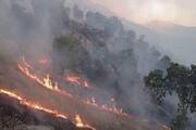 واکنش دادستان به خبر آزادی عاملان آتش سوزی خائیز