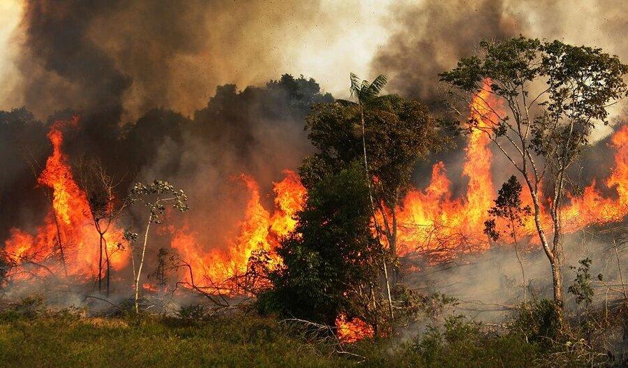 زاگرس همچنان در آتش | آخرین وضعیت آتشسوزی در جنگلها و مراتع ۹ استان -  همشهری آنلاین
