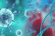 جدیدترین آمار ابتلا به کرونا در مازندران | ۳۳ درصد کشندگی کرونا در بیماران سرطان ریه