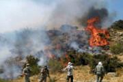 اینفوگرافیک | همه آمارها درباره آتشسوزی جنگلهای زاگرس