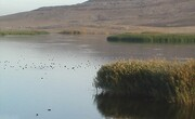آبگیری بزرگترین حوضه آبریز کرمان