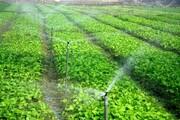بهرهبرداری از ۶ طرح کشاورزی در شهربابک