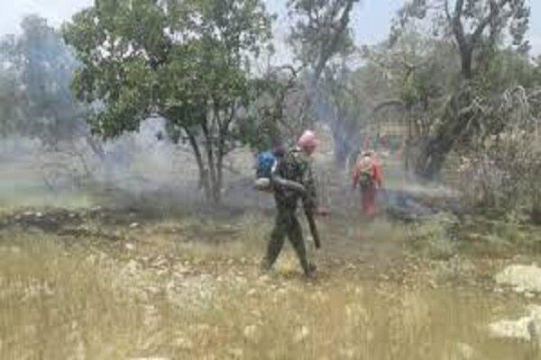 آتشسوزی دیل گچساران