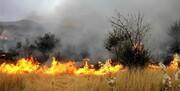 دلیل آتشسوزی پارک چیتگر اعلام شد