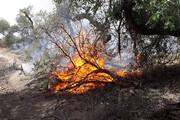 """آتش بیاحتیاطی گردشگران در روستای """"درقلعه"""" استهبان خاموش شد"""