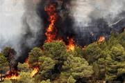 ۲۹ درصد عرصههای طبیعی خراسان شمالی در محدوده پرخطر آتشسوزی