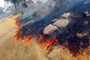 طرح پایش حفاظتی در عرصههای مستعد آتشسوزی اجرایی شد