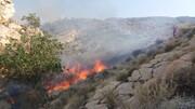 کمبود امکانات محیط زیست یزد برای اطفای آتش | ایجاد آتشبر در باغ شادی