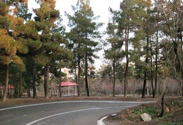 پارك جنگلي سرخه حصار