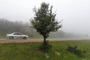 تصویر   هوای مهآلود در بدرانلوی بجنورد