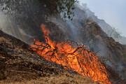 دستگیری ۴۰ متهم آتشسوزی جنگلهای زاگرس
