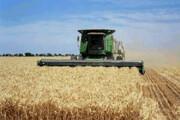 سود کشاورزان در جیب دلالها