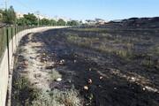 آتشسوزی تپه هگمتانه به بافت تاریخی آسیب نزد