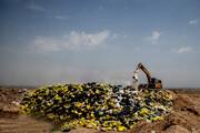 آمل در محاصره زباله | آب شرب در معرض آلودگی