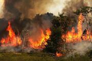 خسارت بالای حریق به منابعطبیعی کبودرآهنگ
