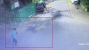 فیلم | لحظه حمله وحشتناک پلنگ به عابر پیاده
