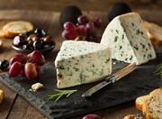 پنیری که مصرف آن احتمالا به مقابله با کرونا کمک میکند