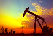 جزئیات مهم طرح فروش نفت به مردم | مردم میتوانند تا ۱۰۰ هزار بشکه نفت بخرند | کسی ۵۰ هزار بشکه بخرد میتواند با یک کشتی صادر کند!