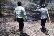 آتشسوزی اراضی جنگلی آستارا مهار شد