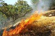 انجام۱۰۳ مورد عملیات اطفای حریق توسط آتشنشانی زنجان