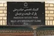 کلینیک بازپروری حیات وحش پردیسان تعطیل نمیشود