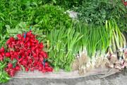 افزایش قیمت سبزی  | گلابی ۱۲۰ هزار تومانی قاچاق است