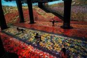 عکس روز | غوطهوری در نقاشیهای مونه