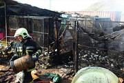 حریق در بازار گل امام رضا | ۳۲ غرفه طعمه آتش شد