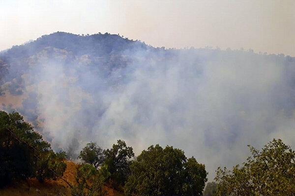 آتش سوزی طبیعت