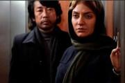 دردسرهای عجیب مهناز افشار در «مهمانخانه ماه نو» | کارگردان ژاپنی: ضرر کردیم