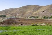 بهرهبرداریاز ۱۱ طرح کشاورزی در سربیشه