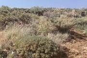 منابعطبیعی مشکل توسعه معدنی در آذربایجان غربی است