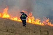 آتش ۴۰ هکتار از مراتع طارم را خاکستر کرد
