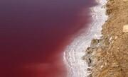 پدیدهای نادر   دریاچه نمک قم برای اولین بار سرخ شد