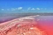 شکوفایی جلبکی دریاچه نمک قم را قرمز کرد