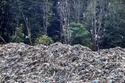 زنگ خطر تلنبار زباله در عرصههای جنگلی | تولید ۱۵۰ تن زباله در فصول گردشگری